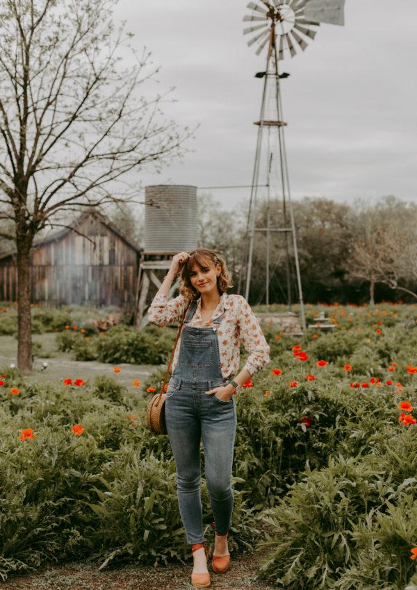 La Salopette En Jean Dans Les Champs De Coquelicots – Castroville, Texas